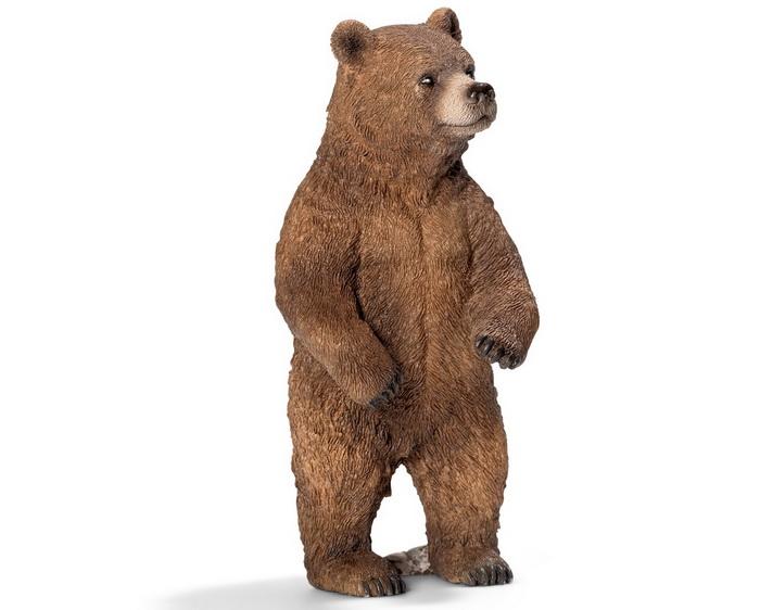 Медведица Гризли.
