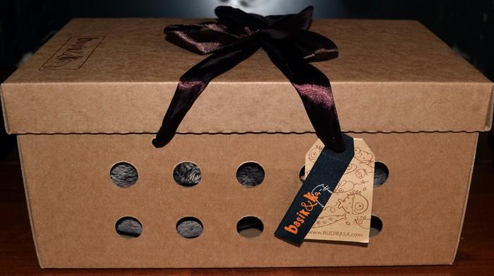 Коробка от Басика, в которой он продаётся.