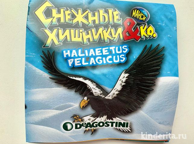 Буклет с информацией о коллекции и животном Заполярья.