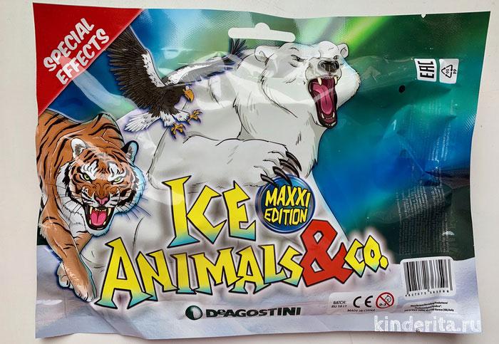 Ice animals & Co.